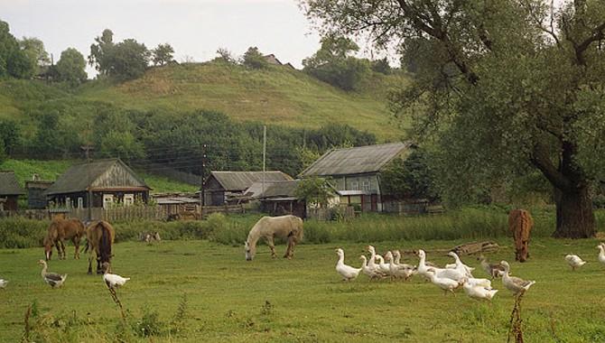Çevre Için Ciddi Bir Endişe Daha: TOKİ Köylere Girecek!