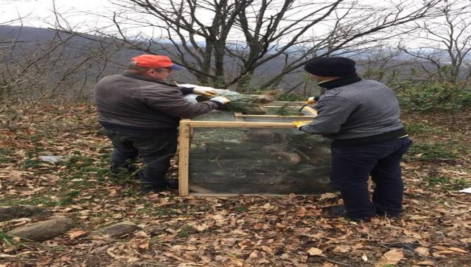 Gölcük Orman İşletme'den Zararlılarla Mücadele