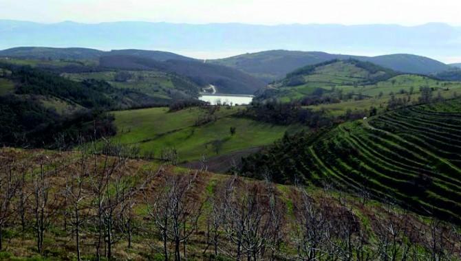 """Karaosmanoğlu, """"Tarımda verim istiyorsak arazilerin toplulaştırılması şart"""""""
