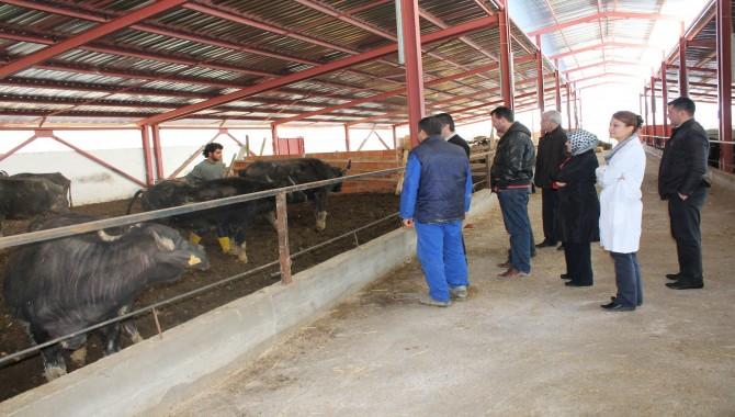 Kocaeli Büyükşehir'den Çiftçiye Tarımsal Destek