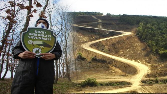 Kuzey Ormanları için 'koruma' çağrısı