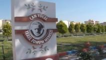Seferihisar Belediyesinden 50 bin fide-VİDEO