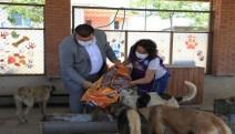 SEHAYDER yuvaya 1 ton mama bağışldı