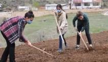 Tohumu toprakla buluşturdular-VİDEO