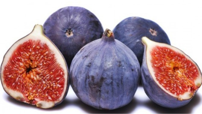 Türkiye'nin ilk kurutmalık siyah inciri geliştirildi