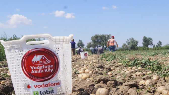 Vodafone Akıllı Köy'de Patates Denemesi Başarıyla Sonuçlandı