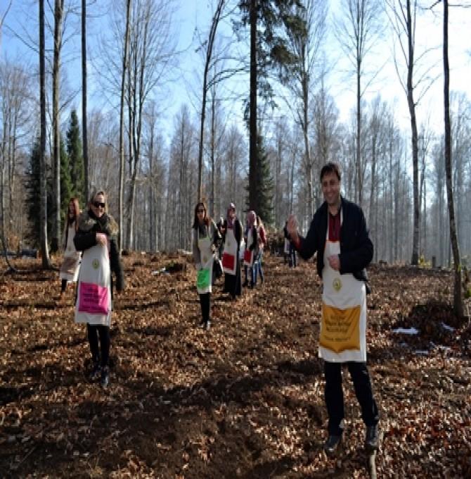 Gölcük Orman İşletme Müdürü Hamdi Kaptanoğlu ''Geleceğin Doğal Ormanlarını Oluşturuyoruz''