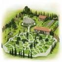 Zeytinburnu'nda Muhteşem Tıbbi Bitkiler Bahçesi